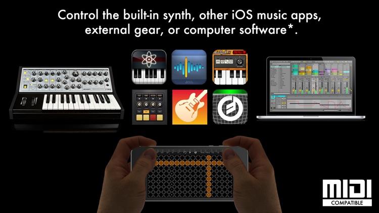 Arpeggionome for iPhone   matrix arpeggiator screenshot-4