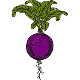 Beets Sticker Pack