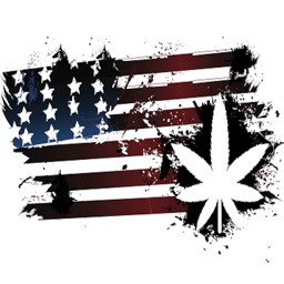 USA Marijuana Laws State by State