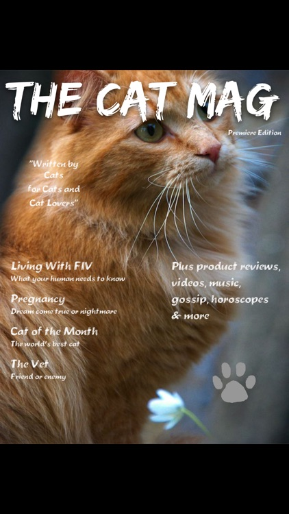 The Cat Mag Magazine