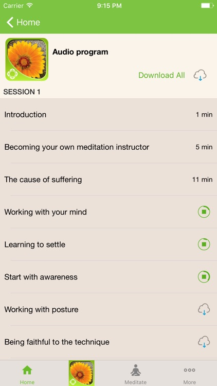 How to Meditate with Pema Chödrön