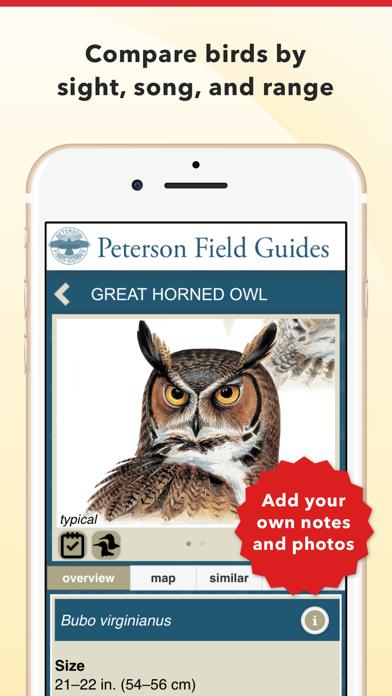 Peterson Bird Field Guide Screenshot