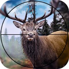 Hunting Adventure Dear Jungle