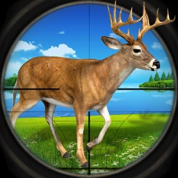 Safari Challenge: Deer Moose Hunter Simulator