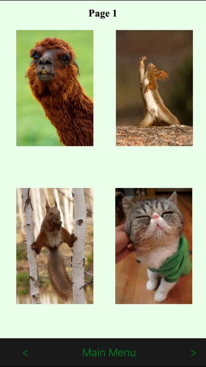 Funny Animals Catalog and Animal Soundboard screenshot-3