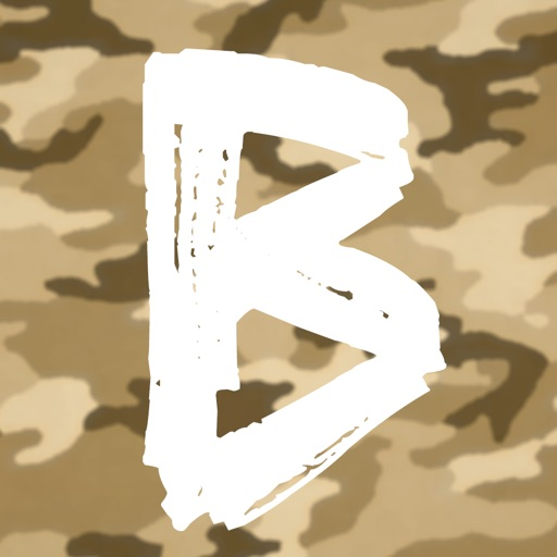 Bootcamp icon