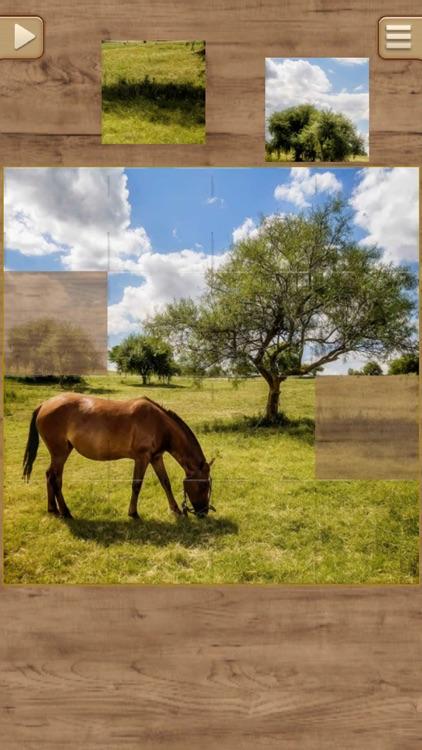 Horse Jigsaw Puzzles - Brain Training Games screenshot-3