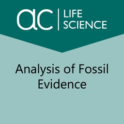 Analysis of Fossil Evidence