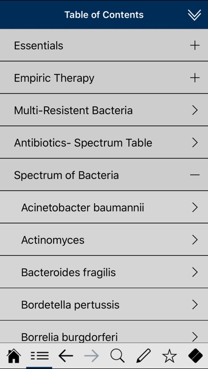 Antibiotics pocket