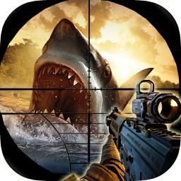 Shark Hunting - 2017