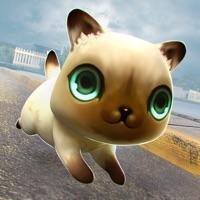 Codes for Kitty Cat Fantasy World Hack