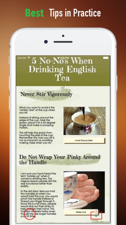 Tea Etiquette Guide-Art of Tea screenshot-3