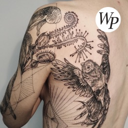 Tattoo - Design Idea / Style Pictures Collections
