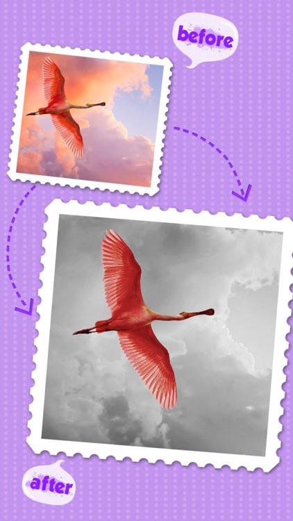 Color Editor - Photo Recolor & Background Eraser screenshot-4