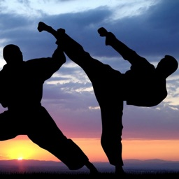 Street Fighter Workout Challenge Free - Defense