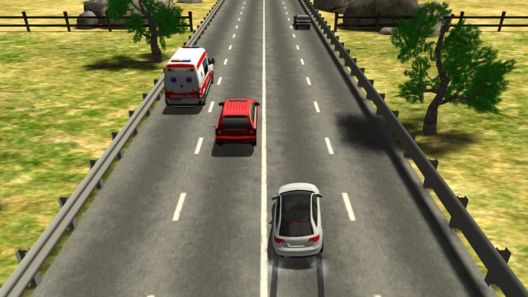 Traffic Racer screenshot-1