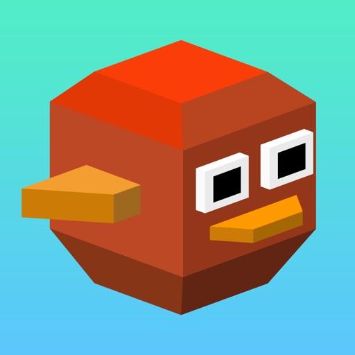 Balloon Bird Game (Watch & Phone)
