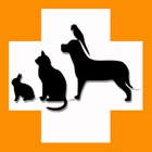 Pet's Veterinary Records icon