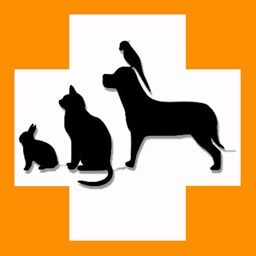 Pet's Veterinary Records