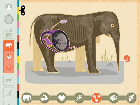 Mammals by Tinybop iPad