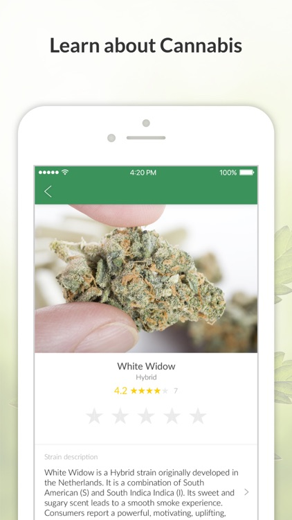 MassRoots Medical Cannabis