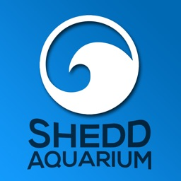 Shedd Aquarium Visitor Guide