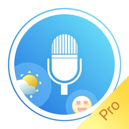Voice Diary -Pro  Keep a Diary by Voices