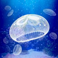 癒しのクラゲ育成ゲーム(無料)