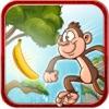 Monkey Splash - Help climb and collect the bananas