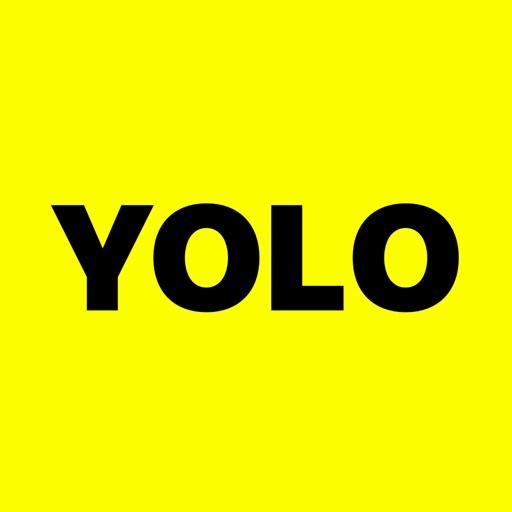 YOLO: Q&A image