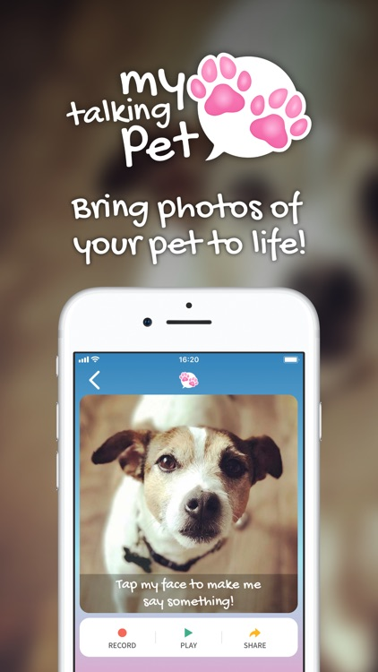 My Talking Pet screenshot-0