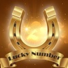 Today Lucky Numbers Reviews