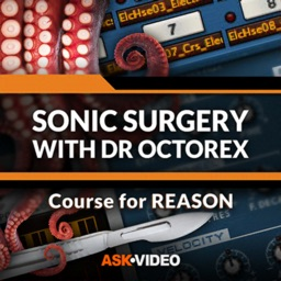 Dr. OctoRex Course For Reason