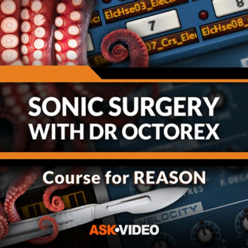 Dr. OctoRex Course For Reason