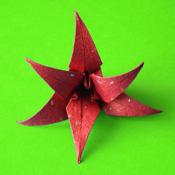 Origami Flowers icon
