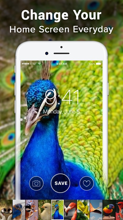 Live Wallpaper 4K ‼ screenshot-4