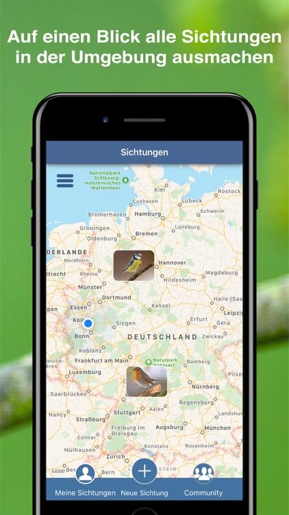 Bird Id - Garden Birds Germany screenshot-7