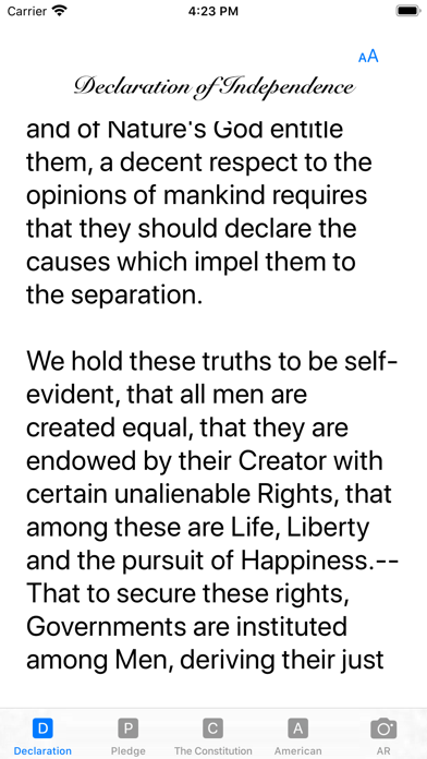our Constitution screenshot 3