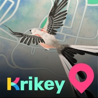 Codes for Krikey Hack
