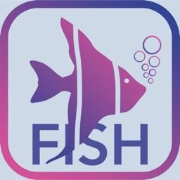 Fish & Bait 2020