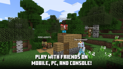 Minecraft Screenshot on iOS