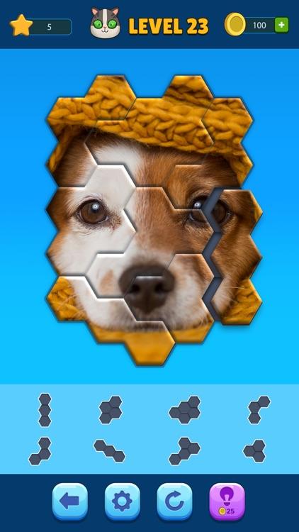 Hexa Jigsaw Puzzle™ screenshot-3
