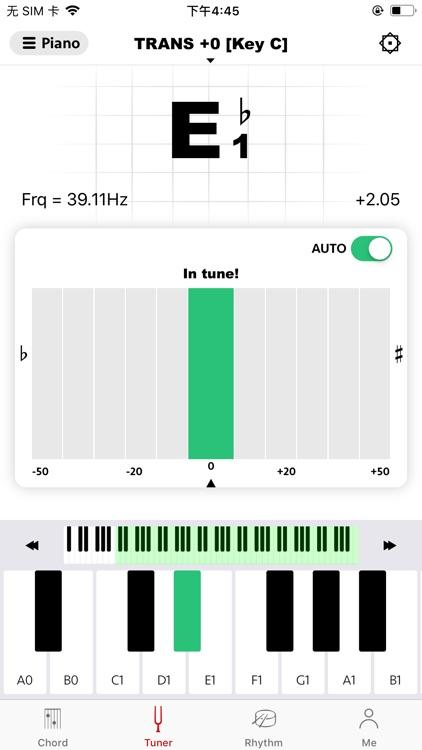 gstrings - Guitar tuning app screenshot-9