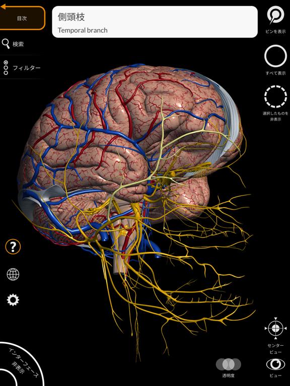 解剖学 - 3Dアトラスのおすすめ画像10