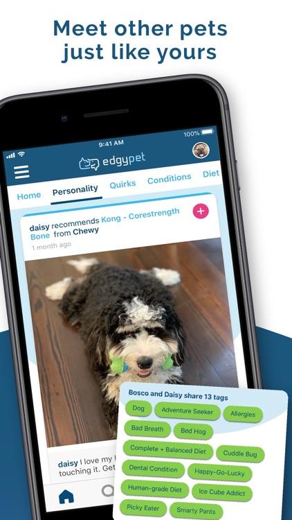 EdgyPet: Pet Social Network