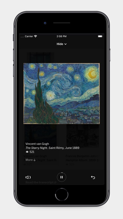 MoMA Audio screenshot-3