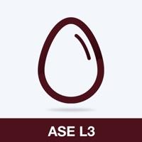 ASE L3 Practice Test Prep