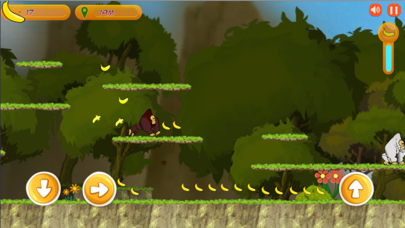 Monkey Kong Adventure screenshot 2