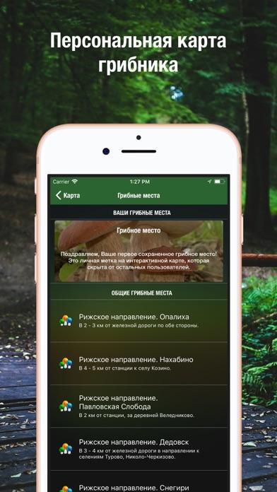 iГрибник: Грибы всего мира Screenshots