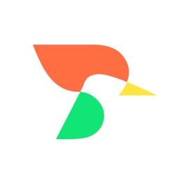 啄木鸟排查